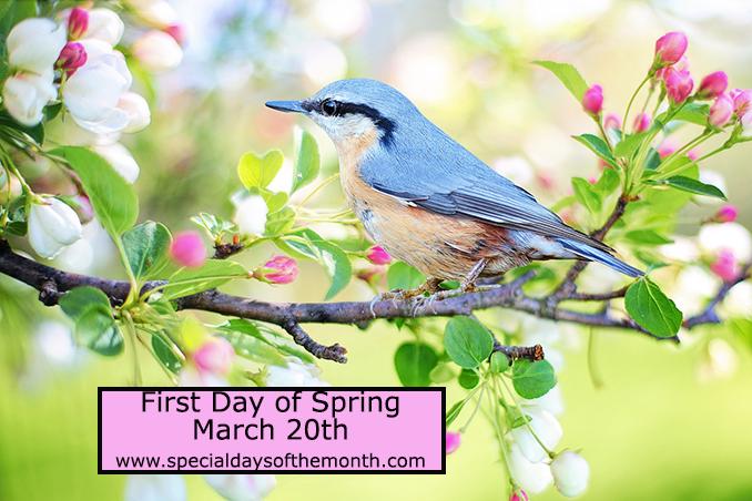 """spring equinox - march 20th"""