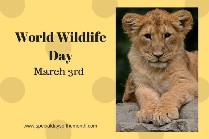 """""""world wildlife day"""""""