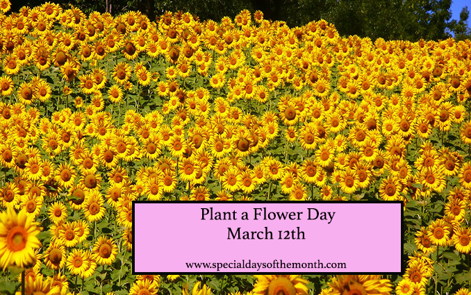 """""""national plant a flower day - march 12th"""""""