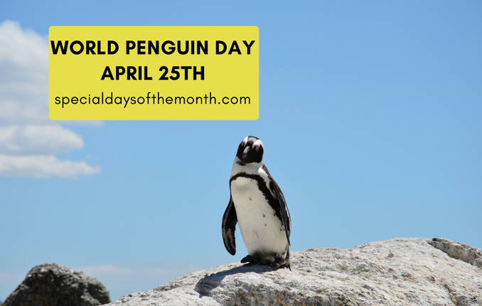 """penguin day - march 4th, 2018"""