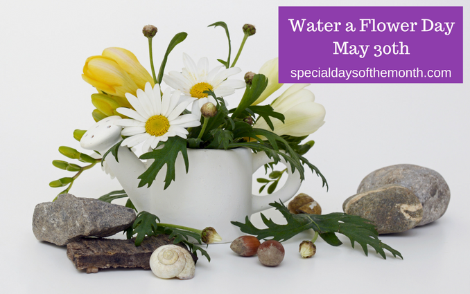 national water a flower day may 30th special days of